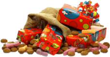 Sinterklaas online